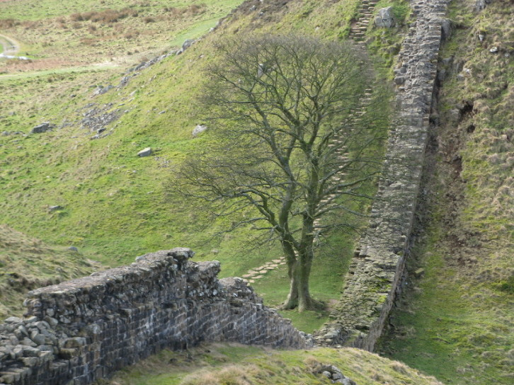 A view of Hadrian's Wall